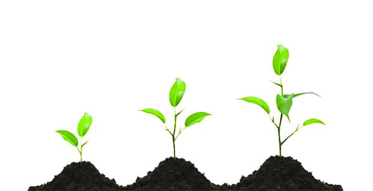 متعهد و علاقه مند بودن به رشد شخصی