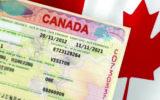از ویزا تا پناهندگی یا امان از شایعات