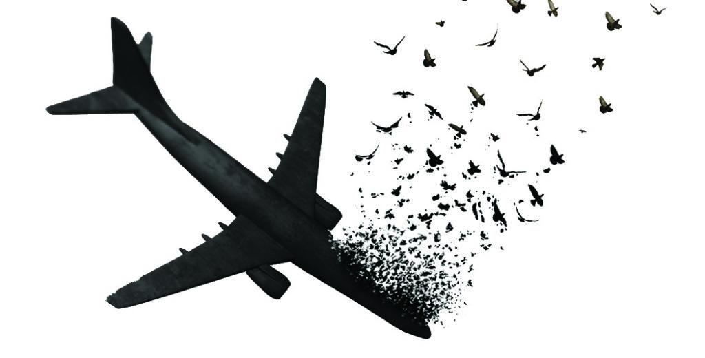 جان باختگان پرواز اوکراین