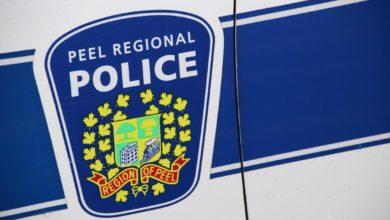 تصویر از پلیس برمپتون مهمانی غیر قانونی را با حضور 200 نفر برهم زد