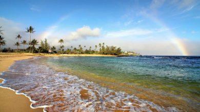 تصویر از گردشگری : کانادایی ها بزودی میتوانند بدون نیاز به قرنطینه به هاوایی سفر کنند