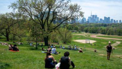 تصویر از وای فای رایگان در دو پارک Masseygrove و Edgeley در تورنتو