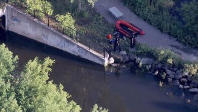تصویر از ریچموندهیل : کشف جسد مرد 30 ساله ای که در کانال ریچموند هیل سقوط کرد