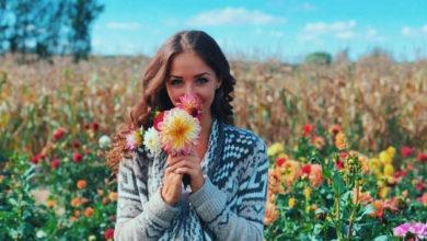 تصویر از مزرعه Andrews Scenic Acres جایی نزدیک تورنتو برای انتخاب گل های زیبا و مورد علاقه