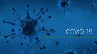 تصویر از مبتلایان جدید به ویروس کرونا در استان انتاریو کمتر از 100 مورد در این هفته بود