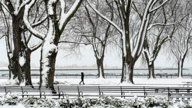 تصویر از محیط زیست کانادا : تورنتو : انتظار باران شدید به همراه بارش برف در روز کریسمس