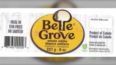 تصویر از قارچ های شرکت Belle Grove بدلیل احتمال آلودگی باکتریایی فراخوانده شدند