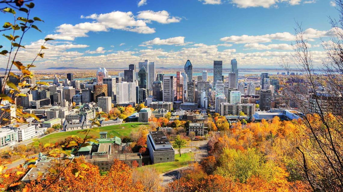 تصویر از کبک : آپارتمان در مونترال و یافتن گزینه مناسب معضلی برای معلولین