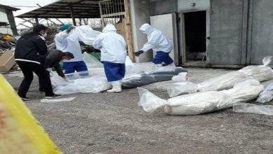 تصویر از ویروس کرونا در ایران جان ۶۸ بیمار دیگر را گرفت
