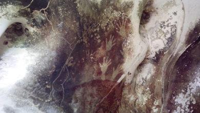 تصویر از تغییرات اقلیمی ممکن است فرسایش غارنگارههای باستانی اندونزی را تسریع کند
