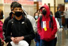 تصویر از پزشک ارشد انتاریو : مدارس استان به احتمال زیاد در ماه سپتامبر با رعایت پوشش ماسک باز میشوند