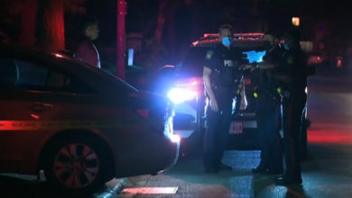 تصویر از پلیس منطقه پیل : کودک نوپا در حادثه برخورد با اتومبیل در برمپتون کشته شد