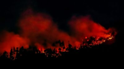 جنگل سوزی جزیره ونکوور به اعلام وضعیت اضطراری محلی و دستور تخلیه منجر شد