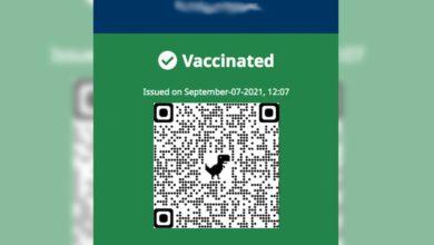 تصویر از برنامه کارت واکسن بریتیش کلمبیا آغاز به کار کرد: ازاینپس ارائه مدرک واکسن برای ورود به بسیاری از کسبوکارهای غیرضروری الزامی است
